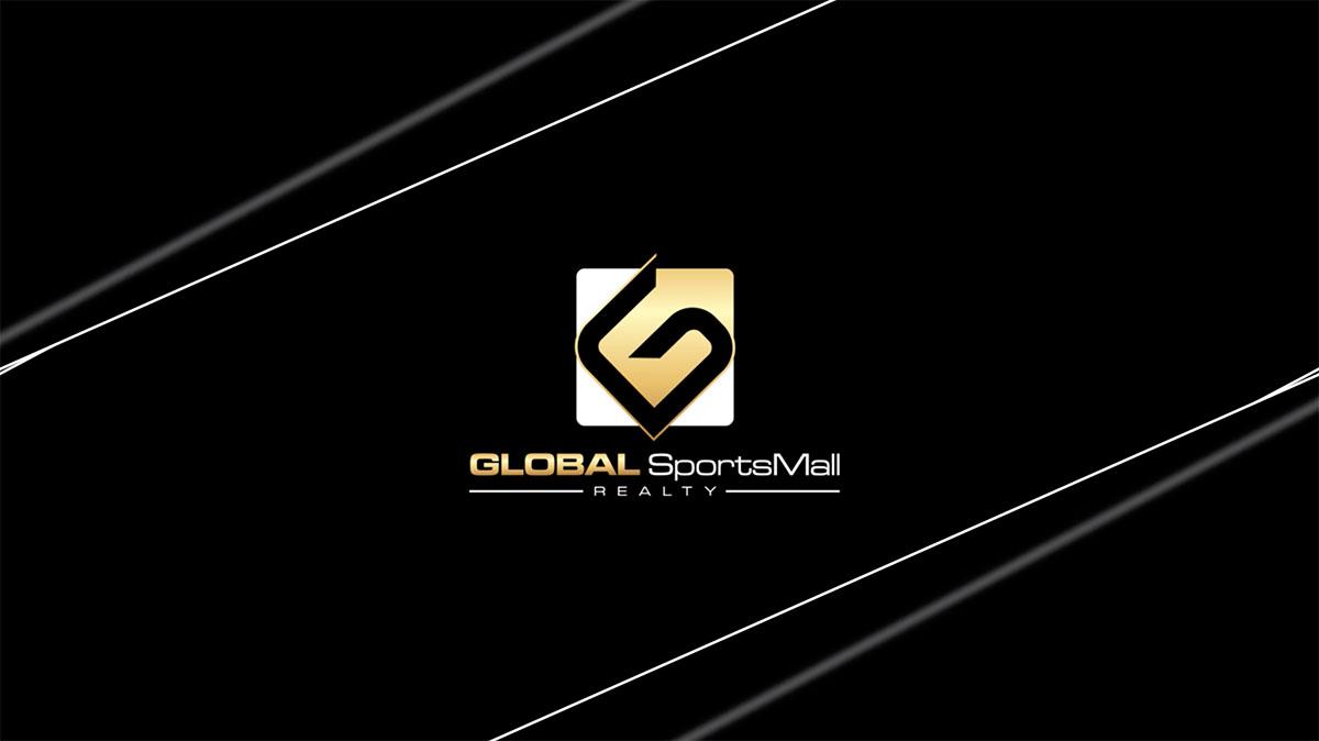 GSMR Video